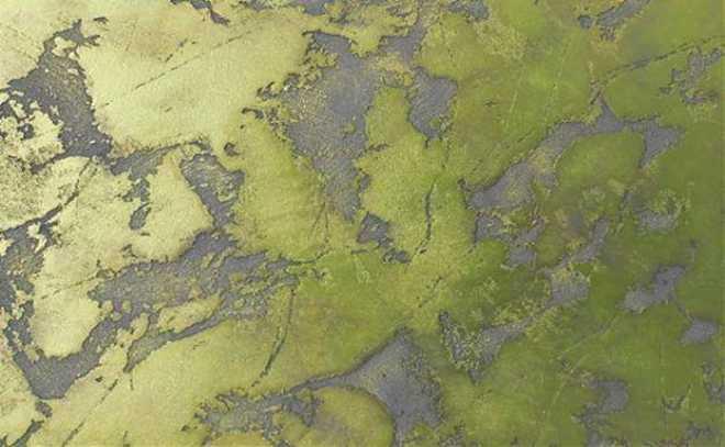 Создание фактуры карты мира